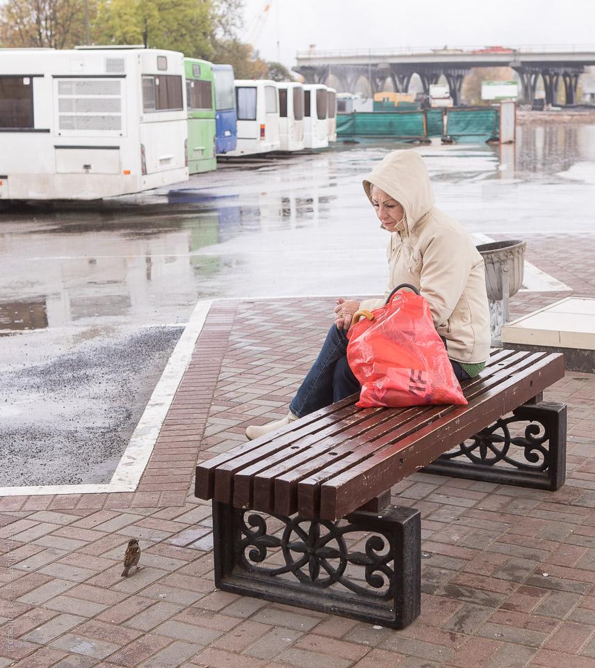 Kvinna och gråsparv på busstation