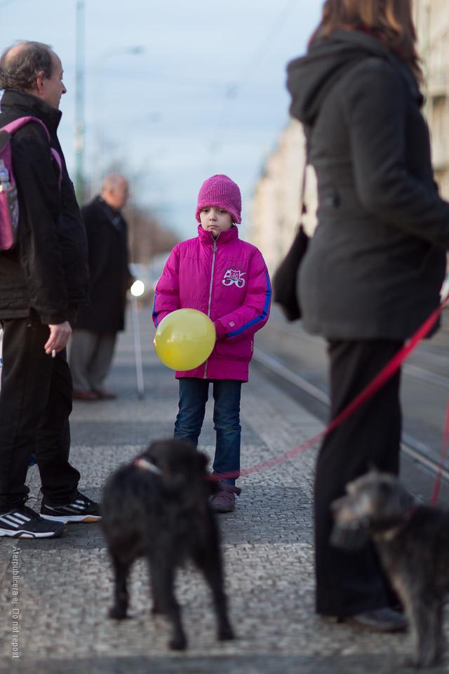 Barn och hund II