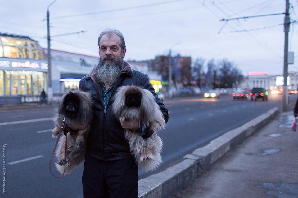 Man bärandes på hundar
