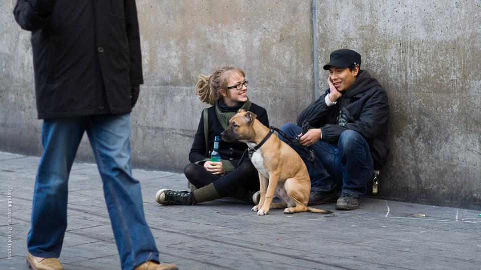 Ungdomar med hund