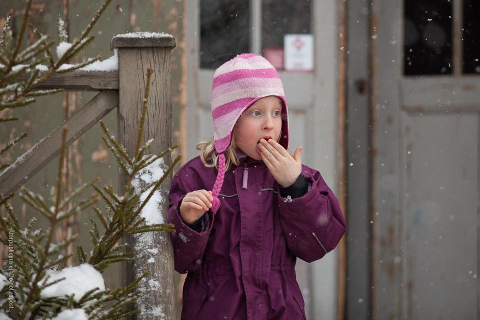 Snösmakning