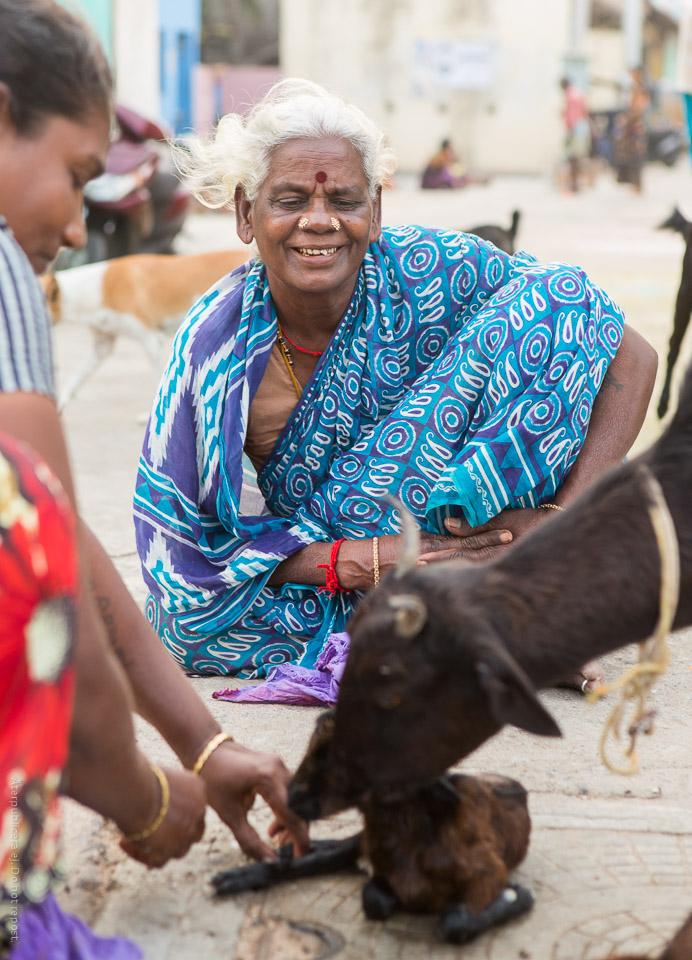 Kvinna i blå sari