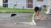 Kvinna och katt